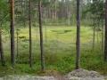 finsko-P7070110