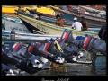 jemen-PICT2750-10