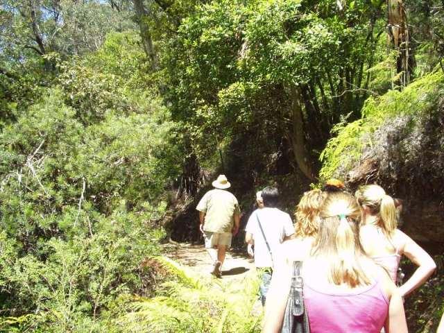 Průvodce následovaný skupinkou turistů