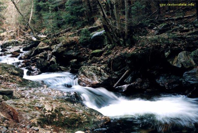 Peřeje na potoku Bílá Opava v Jeseníkách