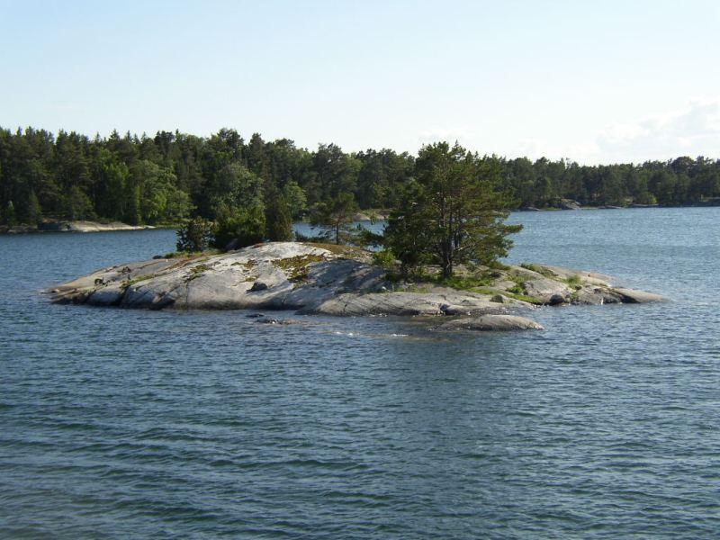 typická švédská příroda