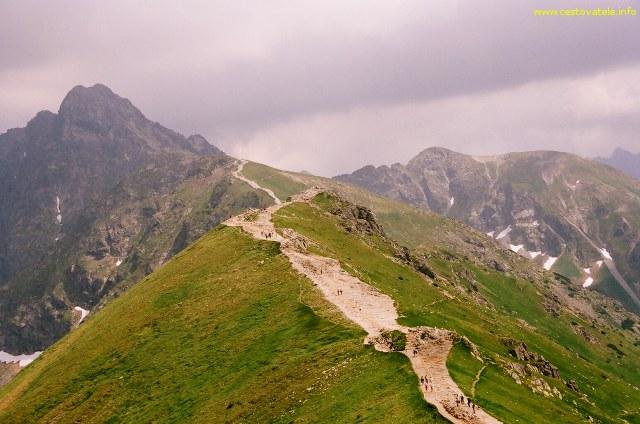 Swinica focená z Kasprova vrchu (Kasprowy Wierch)