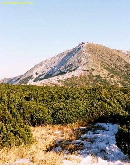 Vrchol Sněžka z Úpského rašeliniště, Krkonoše