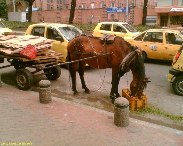 Doprava v ulicích - Bogota