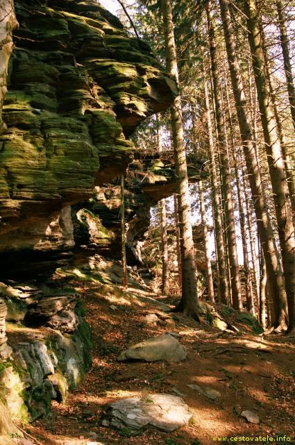 Okolí skalních hradů v pohoří Jeseníky