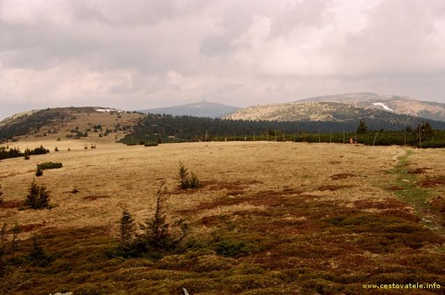 Krajina kolem vrcholu Pecný, v pozadí Praděd - pohoří Jeseníky