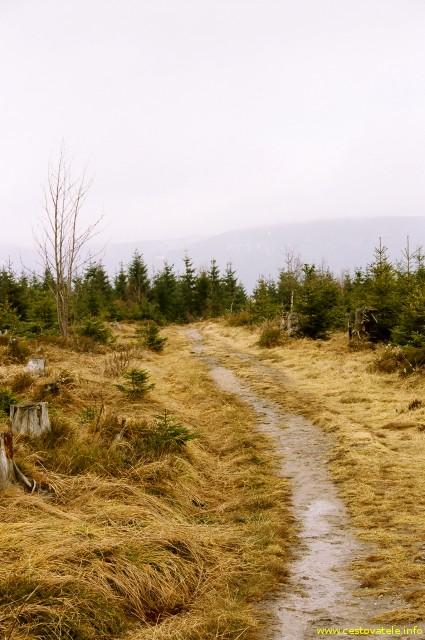 Slatiná stráň, v pozadí černá hora v mlze - Krkonoše