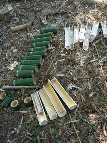 Bambus a jeho využití