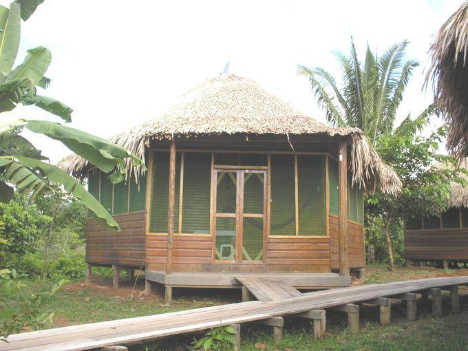 Brazílie, Amazonie