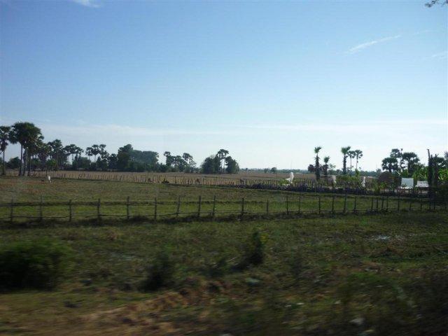 Jednotvárná krajina cestou do Phnom Pehn 1