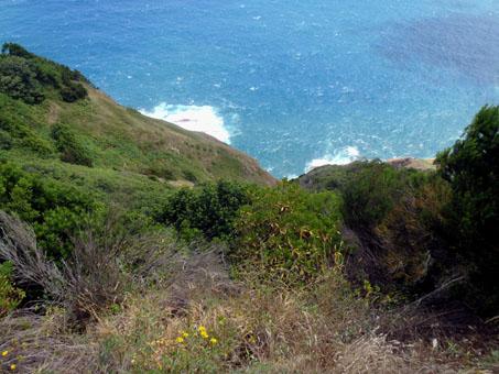 Pohled z útesů do moře