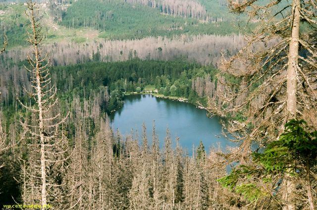 Plešné jezero od Kučerovy vyhlídky - Šumava