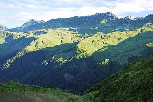 Zarostlé hory