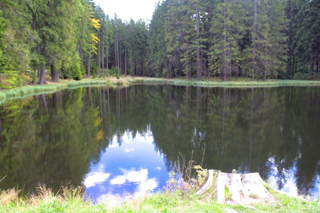 Rybník mezi Žákovou horou a vrcholem Devet skal