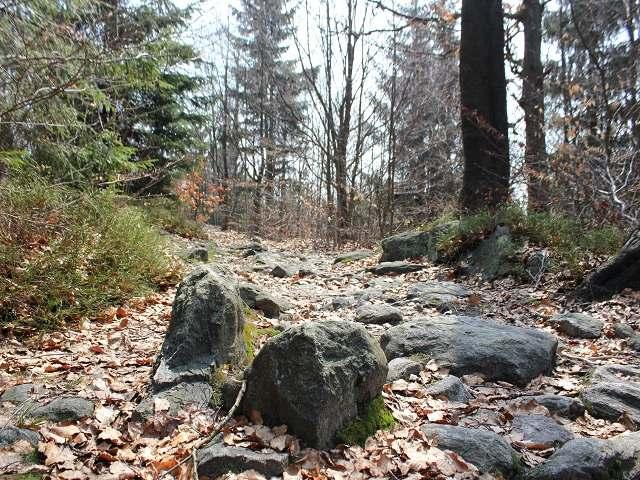 Jedno z mnoha kamenných moří Žďárských vrchů