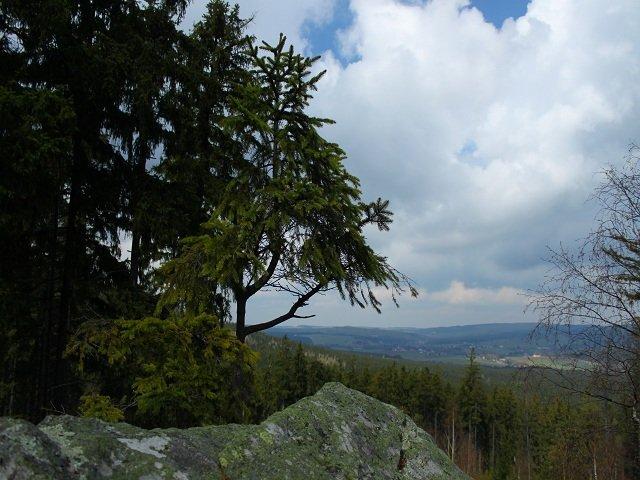 Pohled z Drátenické skály směrem ke Křižánkám