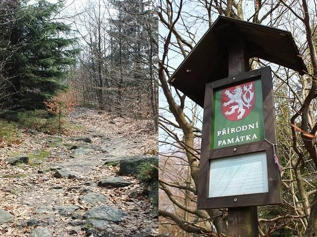 Okolí skal Žďárských vrchů