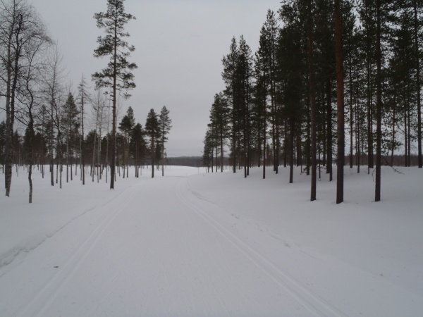 Běžecké trasy v Laponsku