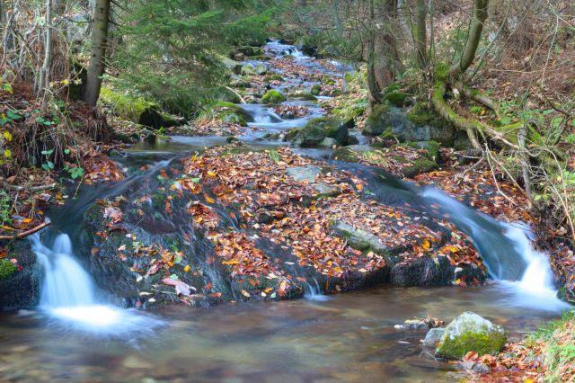 Horský potok Branná nedaleko obce Petříkov - Rychlebské hory