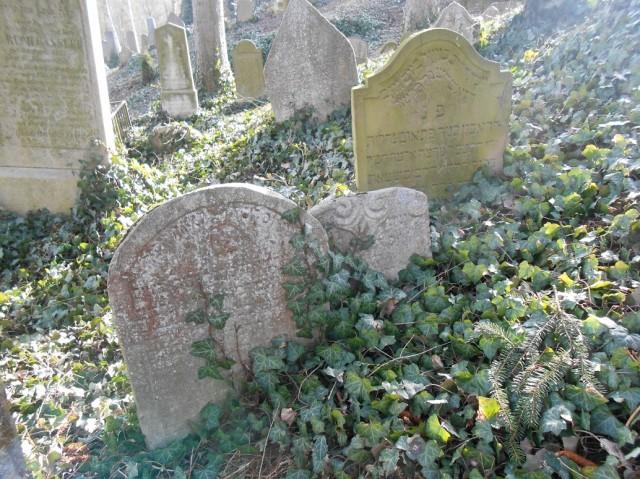 Náhrobky na židovském hřbitově