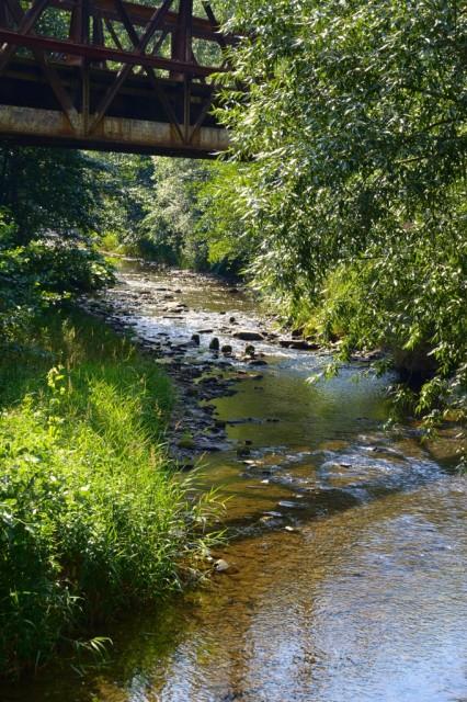 Řeka Bystřice