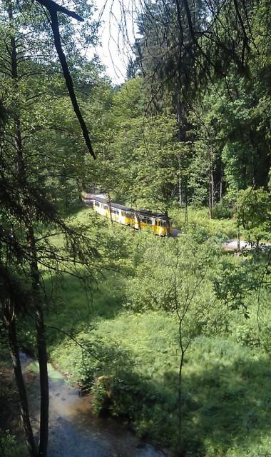 Pohled na Lesní Tramvaj v Křinickém údolí - Saské Švýcarsko