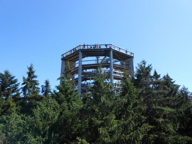 Vyhlídková věž Stezky korunami stromů
