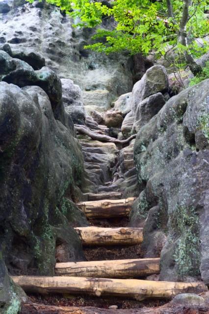 Cesta na Rudolfův kámen - České Švýcarsko