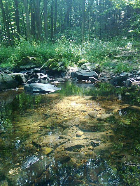 Průzračně čistá voda říčky Krounky