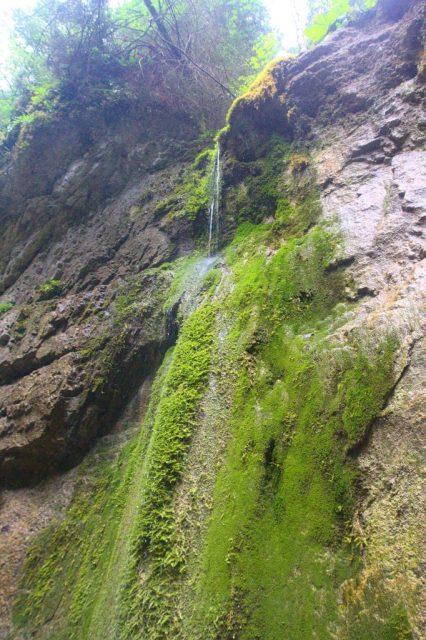 Machový vodopád v roklině Malý Kyseľ.