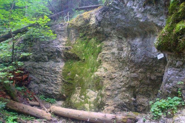 Machový vodopád při nedostatku vody - Kláštorská roklina, Slovenský ráj