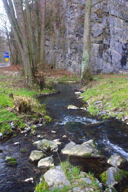 Jedovnický potok kousek za vývěrem, Moravský kras