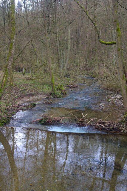 Křtinský potok - Josefovské údolí, Moravský kras.