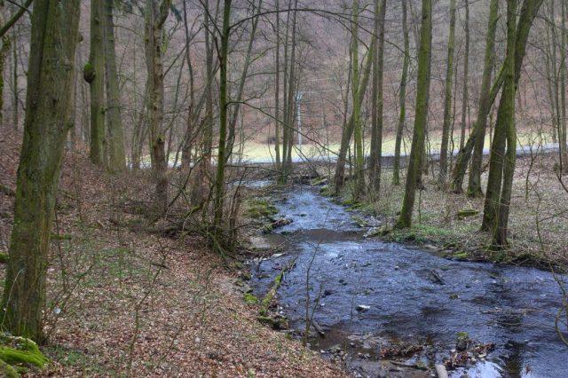 Křtinský potok - Josefovské údolí, Moravský kras