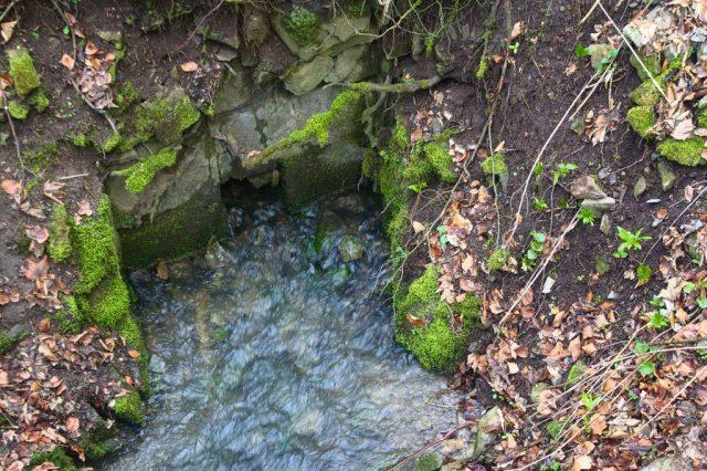 Vývěr křtinského potoka, Křtinské údolí - Moravský kras