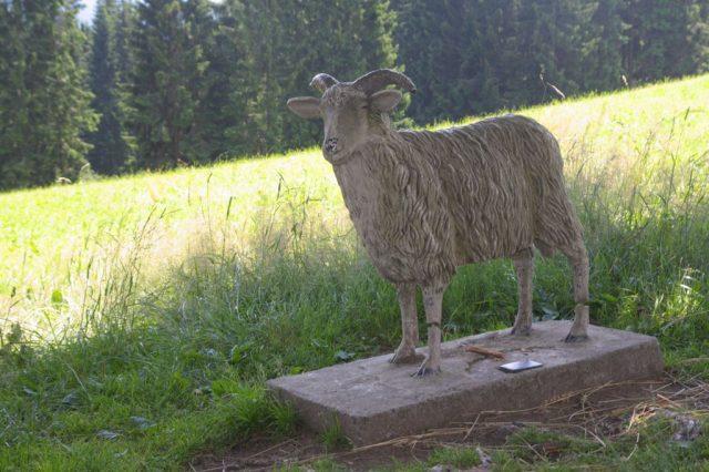 Pomník Valašské ovci - osada Gruň, Moravskoslezské Beskydy
