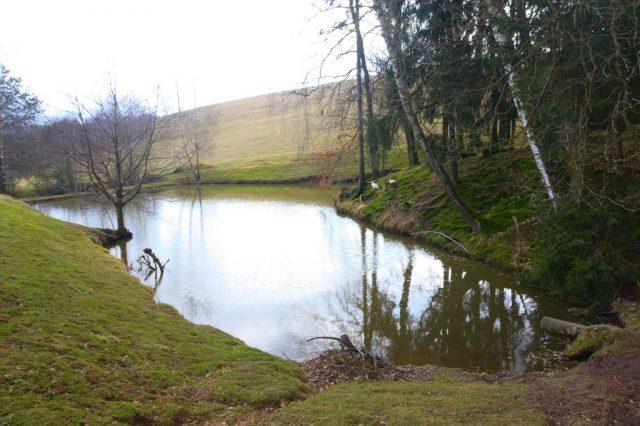Malý rybník u Písečné