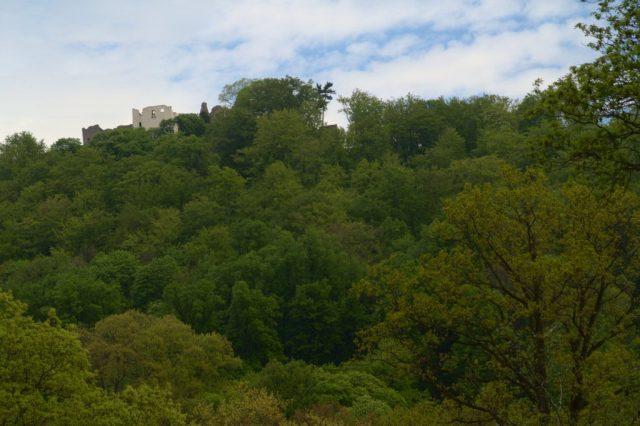 Zřícenina hradu Hukvaldy focená z Obory Hukvaldy