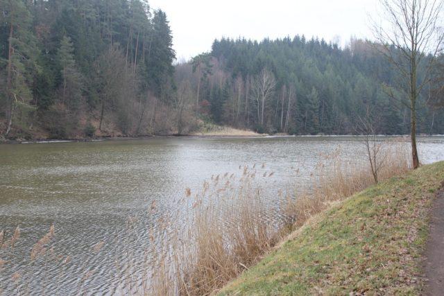 Rybník Šušek