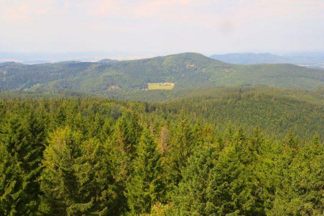 Výhledy z rozhledny na Borůvkové hoře - Rychlebské hory