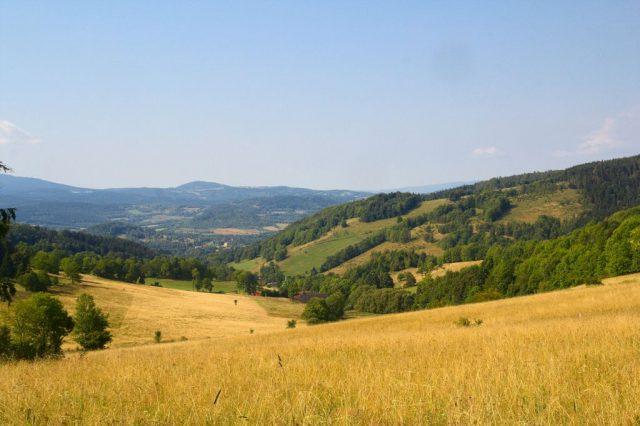 Cestou na Borůvkovou horu