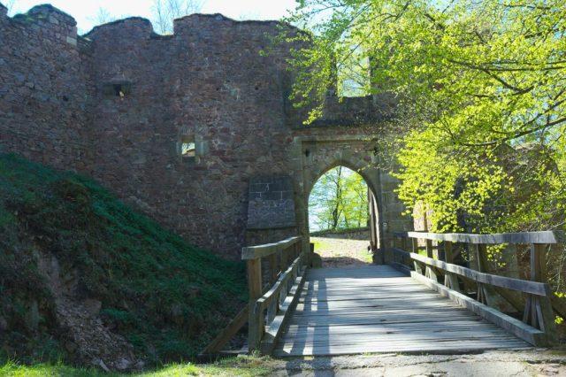 Brána hradu Litice